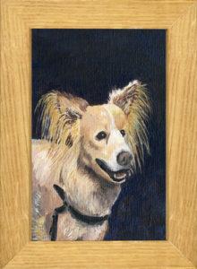 Dipinto di Nina Slejko Blom, riproduzione del cane presente nel film L'Uomo senza passato di Kaurismäki.