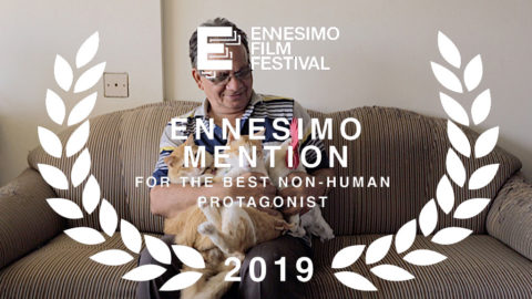 ennesimo-film-festival-2019-ennesmo-mention-non-human-protagonist---tungruss